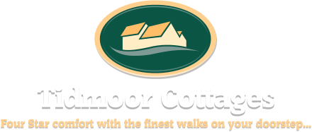 Weymouth Cottage and Stable Accommodation from Tidmoor Cottages